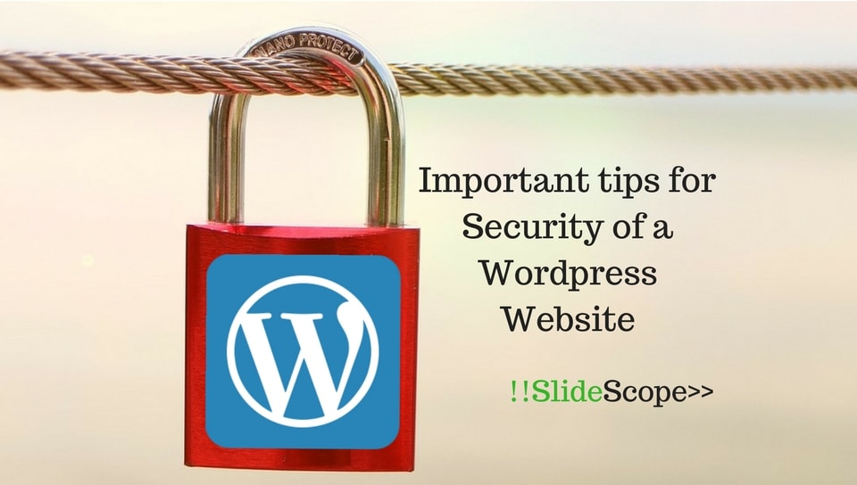 Security of a Wordpress Website